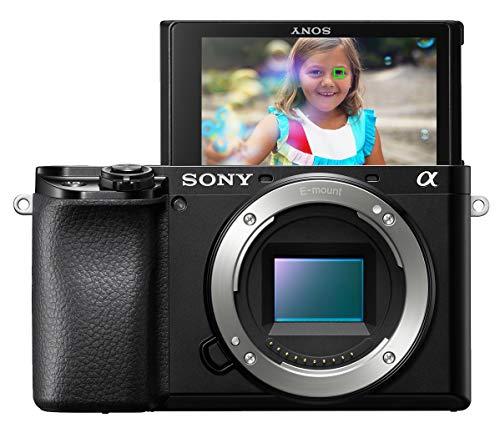 Sony Alpha A6100 Mirrorless Camera