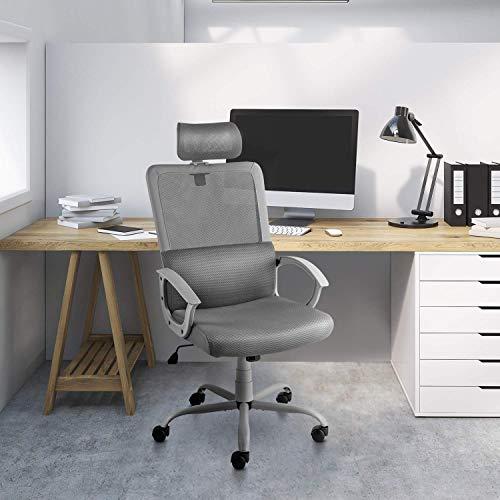 Ergonomic Office Chair Adjustable Headrest Mesh Office Chair Office Desk Chair Computer Task Chair (Light Gray) by Smugdesk        (Image #6)