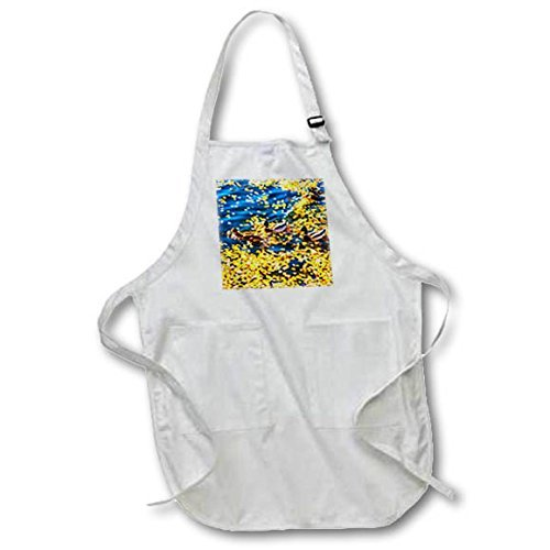 (Professinal Chef Aprons for Women Birds Three Mallard Ducks Cross The Clear Water Of A Pond In Golden Autumn Kitchen Apron with Pockets Restaurant Home Unisex Aprons )