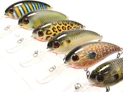 (6 Hard Baits Fishing Lures in One Tackle Box Deep Water Crankbait RealSkin Painting Hard Bait for Bass Fishing HC55KB)