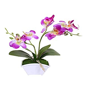 MARJON FlowersPlastic + Silk Cloth Artifcial Butterfly Orchid, 1Pc Artificial Silk Butterfly Orchid Flower Bouquet Wedding Home Floral Decor - Purple 7