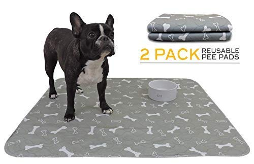 Reusable Training Pee Pad for Pets   Large 31 x 35 Inches   Grey   Value Pack of 2   Perfect for Dogs and Pets all Sizes   Environmentally Friendly   Washable Easy to Care -