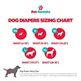Pet Parents Washable Dog Diapers (3pack) of