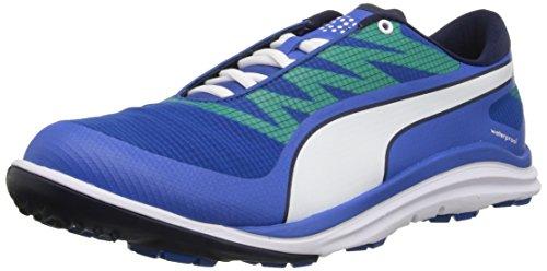 65636735cd3 PUMA Men s Biodrive Golf Shoe