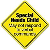 Magnet America Special Needs Child Emergency Decal (Non-Magnetic!)