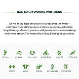 Vermont's Original Bag Balm Moisturizing Lip Balm