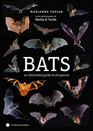 Bat Species (Bats: An Illustrated Guide to All Species)