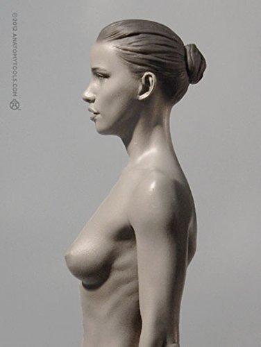 Amazon.com : Female Proportional Figure: V.2 - Proportion & Surface ...