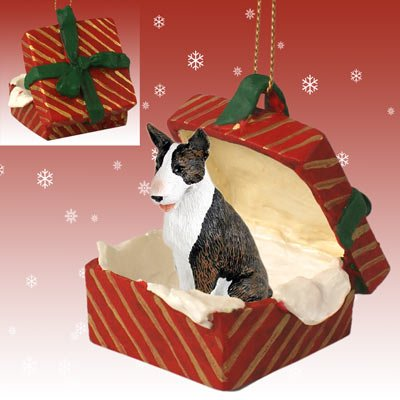 Conversation Concepts Bull Terrier Brindle Gift Box