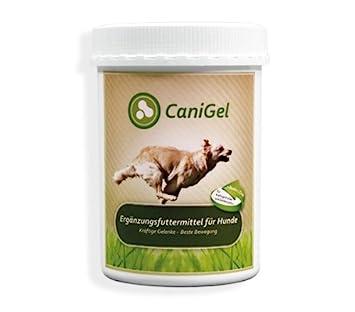 Canigel Gelita 500gr | Gelatina Hidrolizada para Perros y Gatos | Condroprotector Natural usado por los