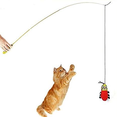 Udane Interesante Juguete Telescópico Entrenamiento Interactivo para Gato: Amazon.es: Productos para mascotas