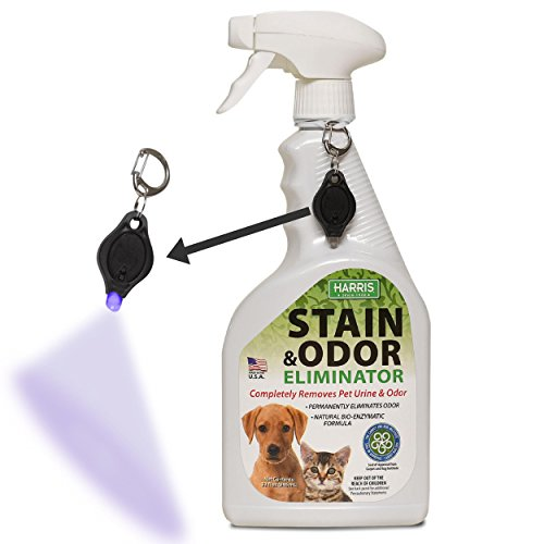 Harris Pet Stain & Odor Remover for Carpet, Enzyme Spray with Free Stain Detection Blacklight, 32oz for Dog and Cat Urine