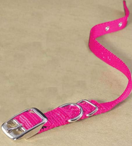 Hamilton 5/8-Inch by 18-Inch Single Thick Nylon Deluxe Dog Collar, Hot Pink