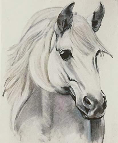 Charcoal Horse head