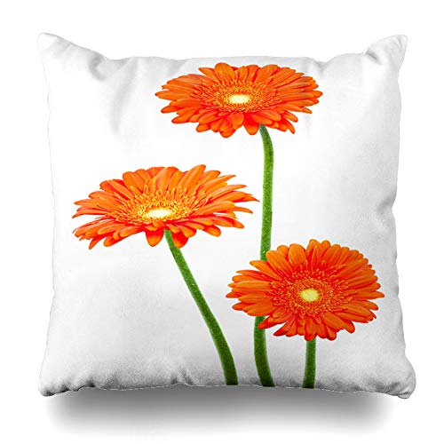 Ahawoso Throw Pillow Cover Square 16x16 Abloom Orange Gerber Red Gerberas African Daisy Nature Fresh Flower Bloom Blooming Blossom Design Bright Zippered Cushion Case Home Decor Pillowcase
