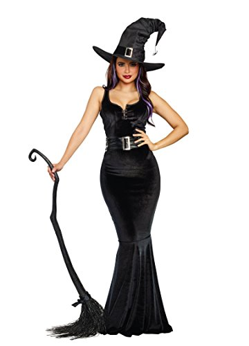 Halloween Gown Costumes (Dreamgirl Women's Bewitching Beauty Velvet Witch Costume Gown, black,)