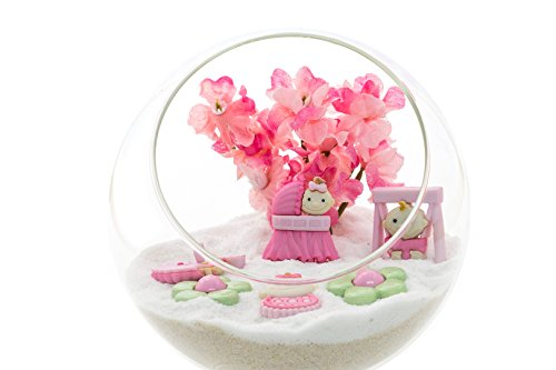 Terrarium Kit | Baby Fun Girl | Simple Accent Series | Complete DIY Starter Gift Set | 4