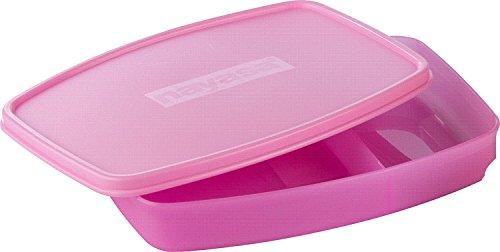Nayasa Witty Polypropylene Lunch Box
