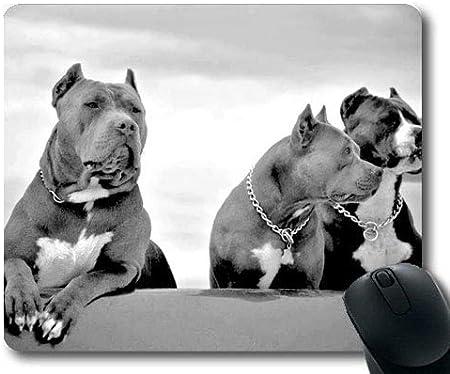 Yanteng Cojines de ratón del Juego, Perro Lindo del Pitbull del Perro de Perrito del Bulldog francés, Costura de la precisión, cojín de ratón Durable