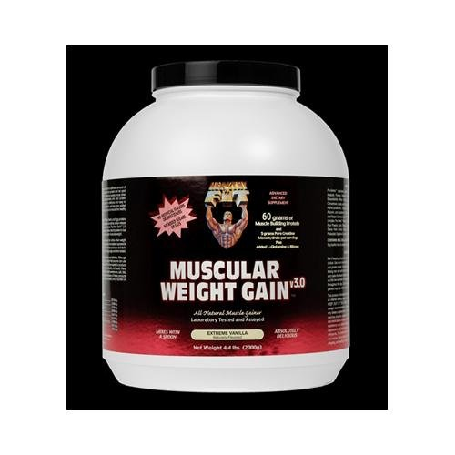 2 Packs of Healthy 'n Fit Muscular Weight Gain 2 - Vanilla - 4.4 Lb. by Healthy 'N Fit