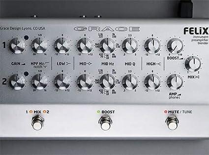 Grace Design Felix Instrument Preamp Blender