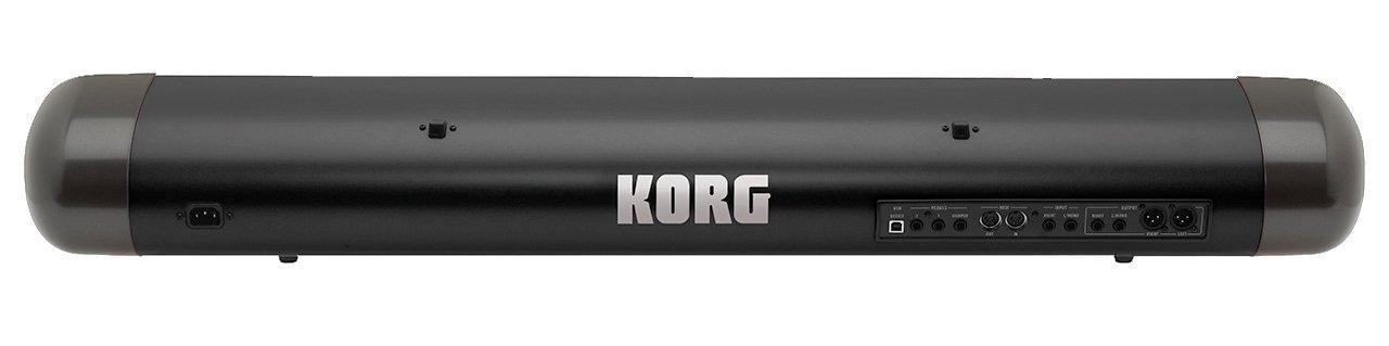 Korg 73R-BK - Sv173r bk reverse stage vintage piano eléctrico: Amazon.es: Instrumentos musicales