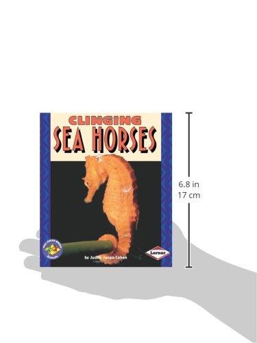 Clinging Sea Horses (Pull Ahead Books _ Animals)