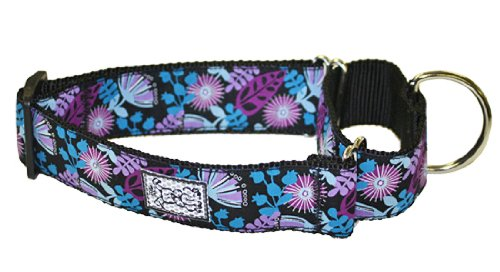 RC Pet Products 1-1/2-Inch All Webbing Martingale Dog Collar, Large, Calypso