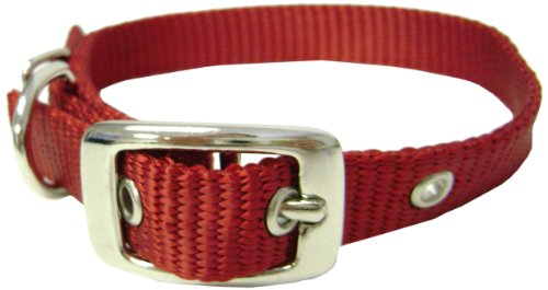 Hamilton 5/8-Inch by 20-Inch Single Thick Nylon Deluxe Dog Collar, Red