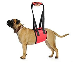 Dog-Lift-Support-Harness