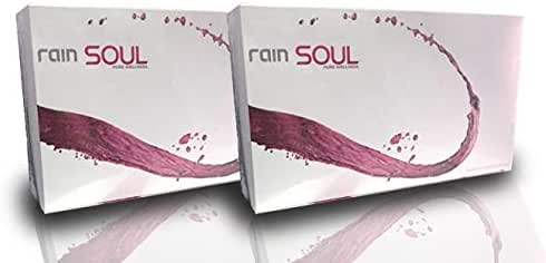 SOUL Antioxidant Supplement Powerful Superfood (2-Pack) Anti-Inflammatory Full of Vitamins and Minerals/Seed-Based Non-GMO Organic Easy Open and Ready To Drink Pouches (2 Ounces) 30 Per Box by RAIN