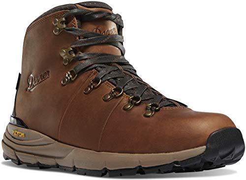 Danner Men's Mountain 600 Hiking Boot, Rich Brown-Full Grain, 8 D US