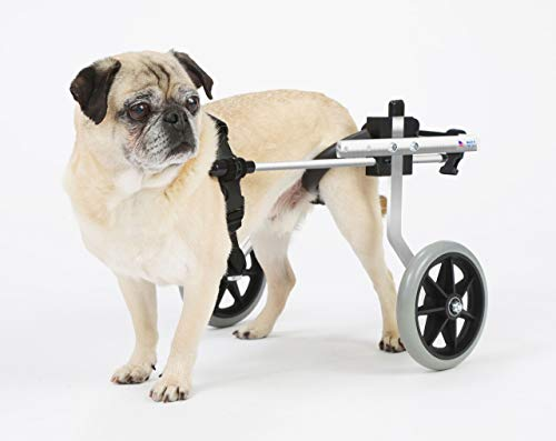 K9 Carts Dog Wheelchair (Small, 16-25 lbs) - Made in the USA