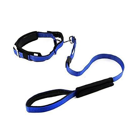 eDealMax Nylon perro que camina manija Correa Ajustable cuerda Para mascotas Cuello de la Correa de