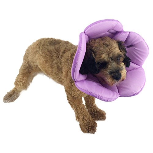 cheap Dog Elizabethan Recovery Collar,Homedeco Soft Sponge Flower Shape Pet Dog Cat Wound Healing Medical Anti-Bite RingCollar Protection Shield