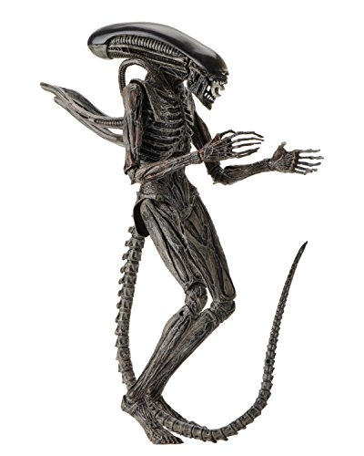 10 Scale Action Figure (NECA Alien: Covenant - 7