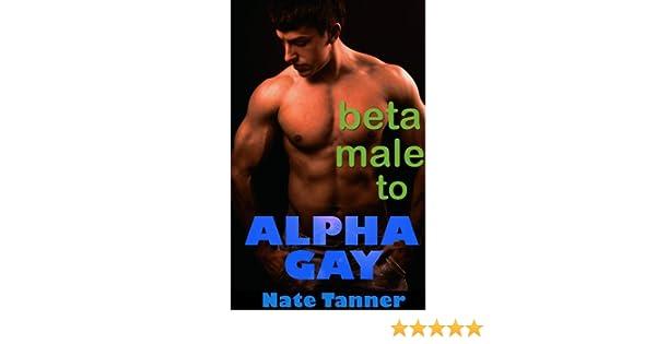 Gay beta male