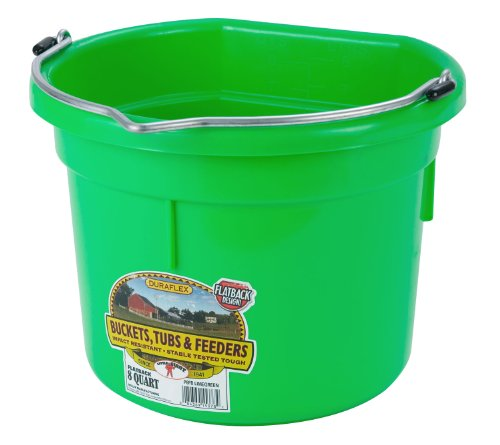 Miller Manufacturing P8FBLIMEGREEN Plastic Flat Back Bucket for Horses, 8-Quart, Green