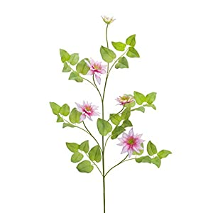 """Diva At Home Club Pack of 12 Green and White Artificial Clematis Vine Sprays Decor 30"""" 20"""