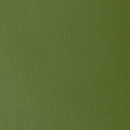 Liquitex Professional Heavy Body Acrylic Paint, 2-oz Tube, Chromium Oxide Green