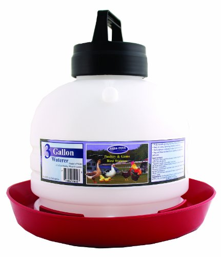 Top-Fill Poultry Fountain