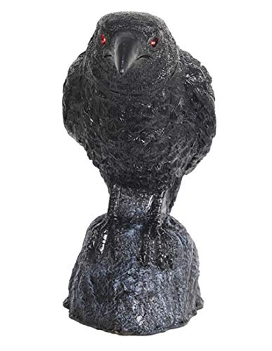 Morris Costumes Raven Head Turning W