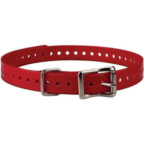 Garmin 3/4-Inch Red Collar Strap for Garmin Delta (Red Collar Strap)