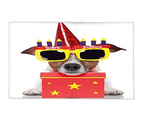Interestlee Fleece Throw Blanket Birthday Decorations for Kids Party Dog with Sunglasses and Cone Hat Boxes Stars Image Red and - Tahoe Sunglasses