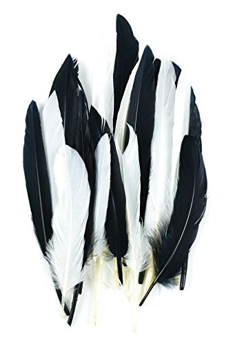 Touch of Nature 24-Piece Mini Indian Feathers for Crafting, 3-Inch, Black/White -