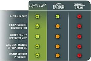 Amazon Com Mighty Mint 16oz Cockroach Repellent Natural Peppermint Oil Spray Garden Outdoor