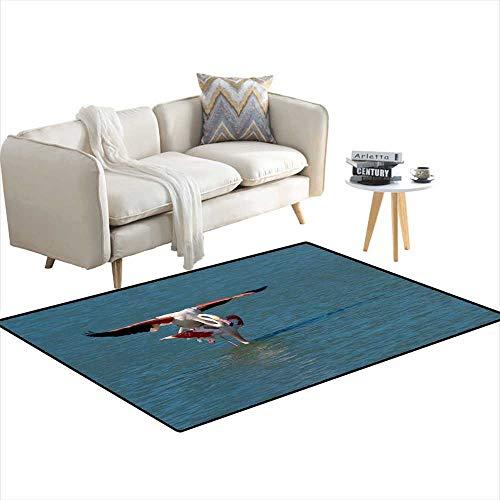 Room Home Bedroom Carpet Floor Mat Pair of Flamingos Matting 36