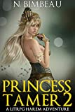 Princess Tamer 2