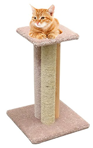 Wood Cat Scratching Post 24 inch Triple Cat Scratcher Furniture Rope, Beige Carpet