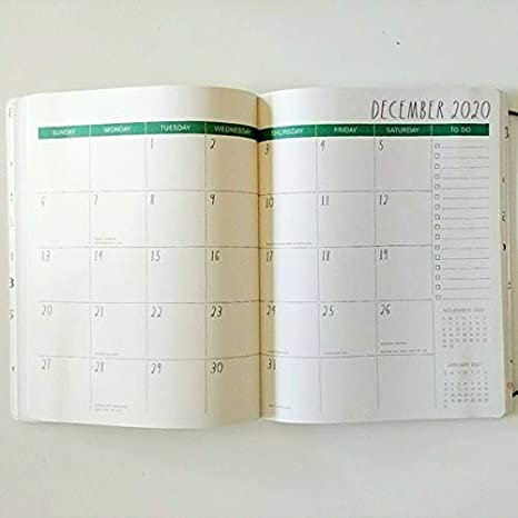 Amazon.com : Rae Dunn Best Year Ever - 2020 Monthly Planner ...